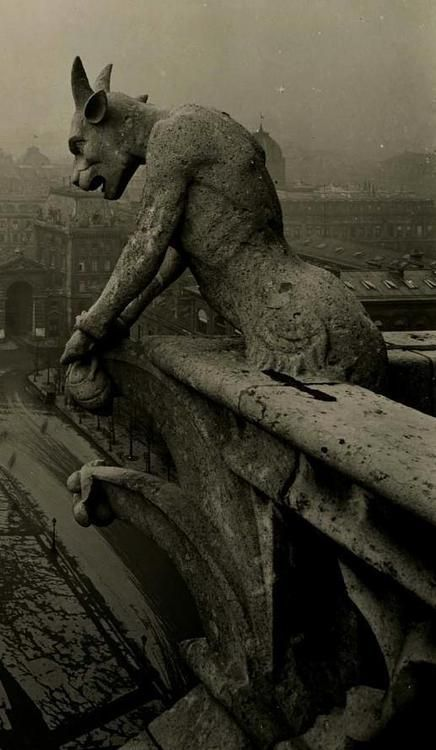 Amazing vintage photo of the famous gargoyle at Notre Dame. History in Pictures.