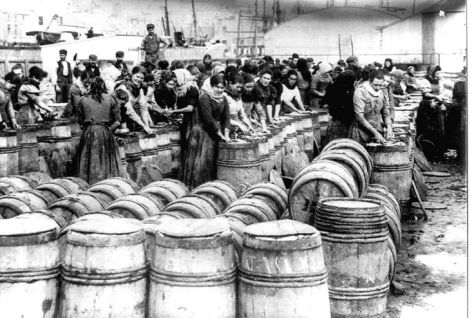 Packing the herring at Wick Harbour c1890s. Old Pics Archive.