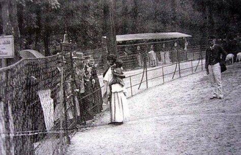 Famílias africanas sendo exibidas em zoológicos humanos, em Bruxelas, no final do século XIX. Fotos de fatos.